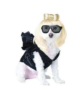 Lady Gaga, Halloween Costume for Djali  picture image
