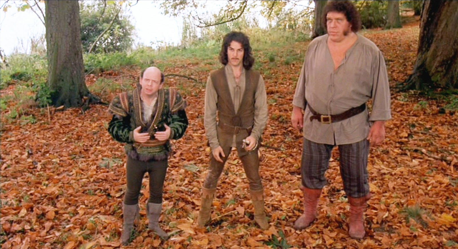 Wallace Shawn as Vizzini, Mandy Patinkin as Inigo Montoya and André the Giant as Fezzik The Princess Bride picture image