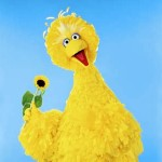 Big Bird of Sesame Street Picture image
