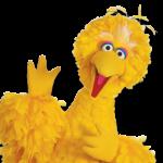 Big Bird of Sesame Street picture image