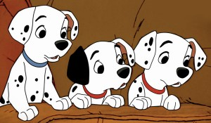 Puppies 101 Dalmatians picture image