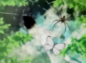 The Spider and the Butterfly caught in the web Princess Tutu Trailer picture image