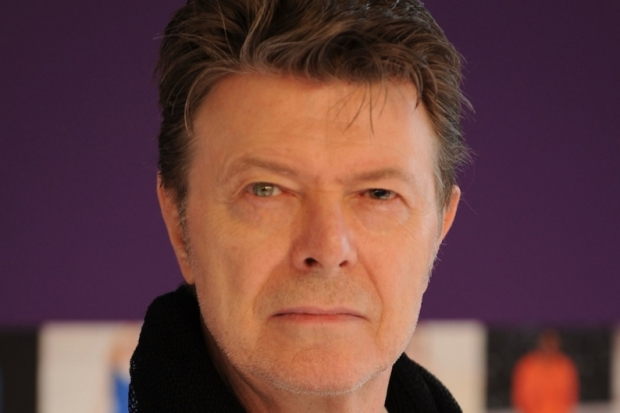 David Bowie  picture image