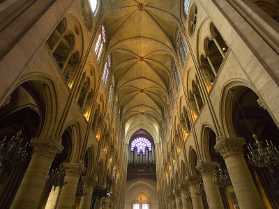 Interior of Notre Dame  picture image
