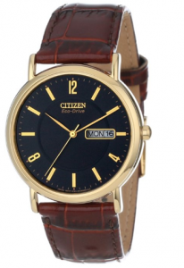"Citizen Men's  ""Eco-Drive"" Gold-Tone Stainless Steel and Leather Strap Watch sister Gudule picture image"