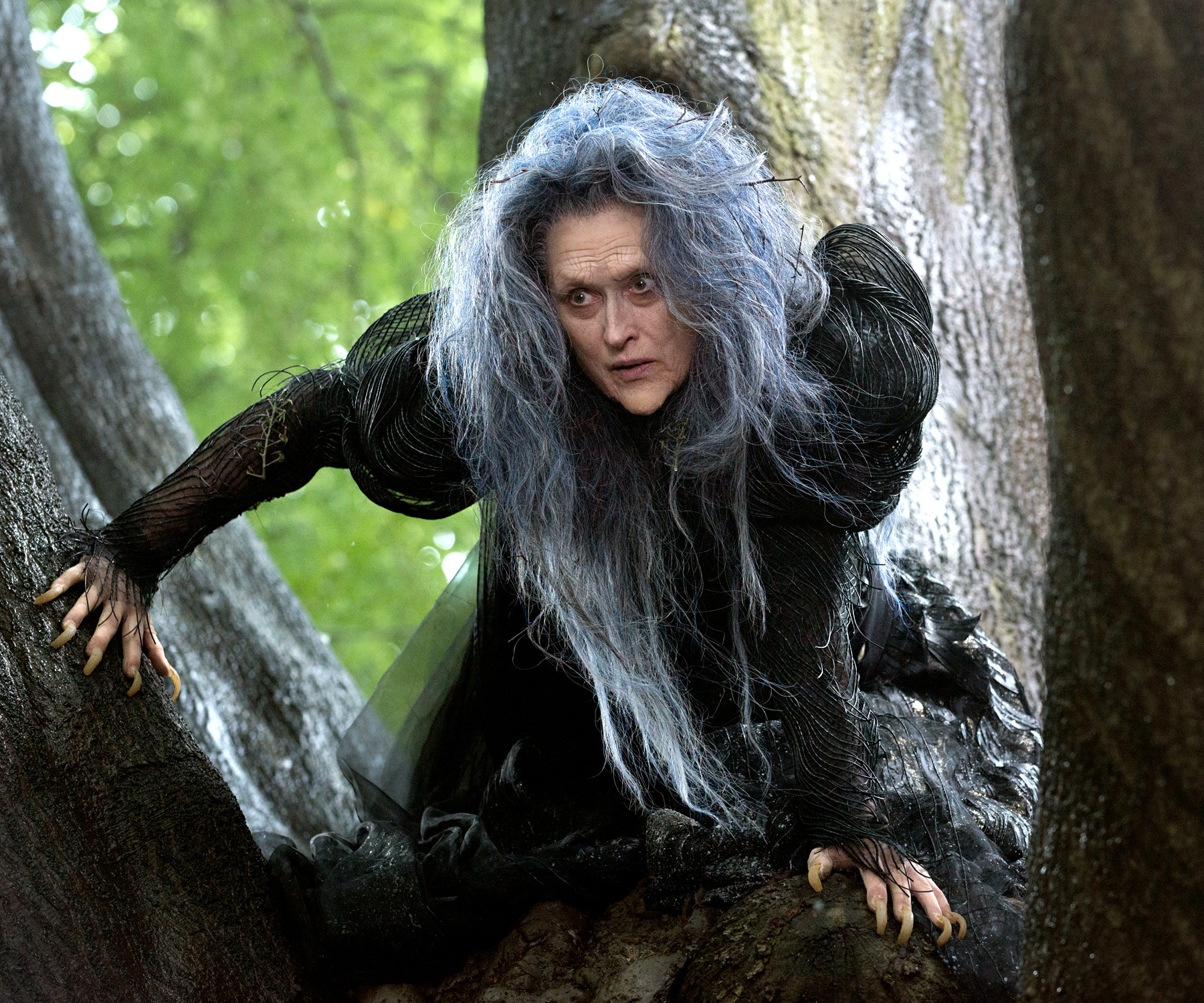 Meryl Streep as The Witch Into the Woods Picture image