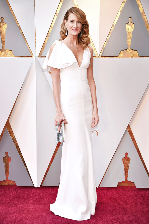 Laura Dern in Calvin Klein Oscars 2018 picture image